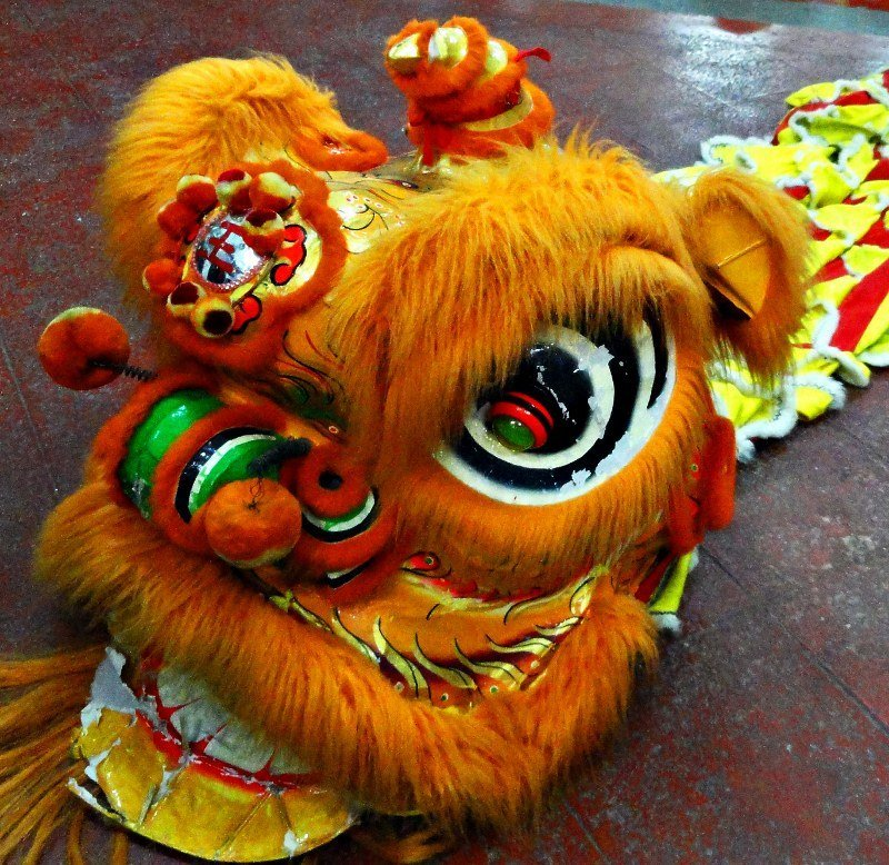 post image for video a lion roars for chinese new year - Chinese New Year Video