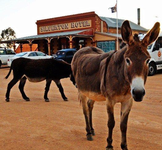 Mad Max Australia Outback Silverton
