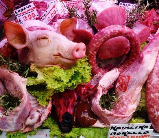 Bologna butcher pigs head