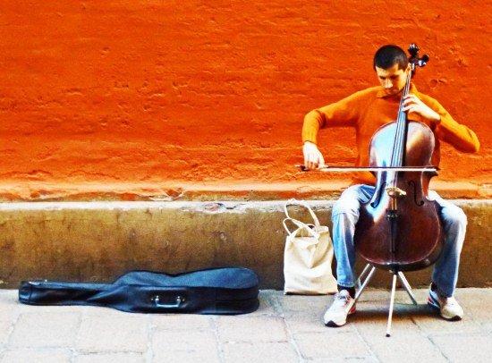 Bologna street musician