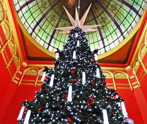 Christmas tree queen victoria building Sydney Australia