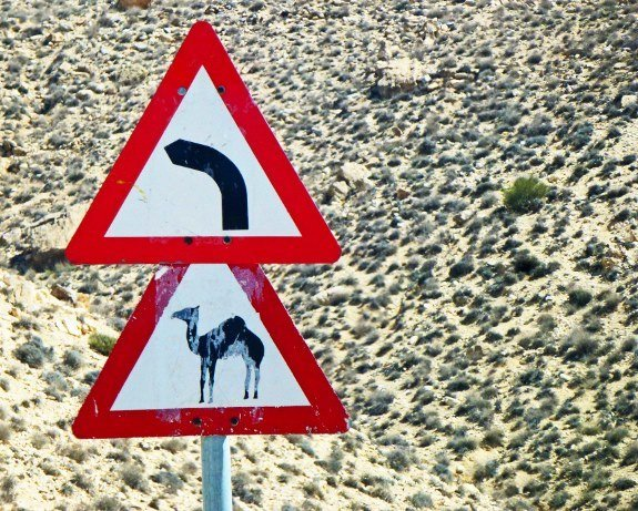camel crossing sign Jordan