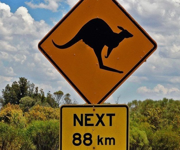 kangaroo animal crossing sign
