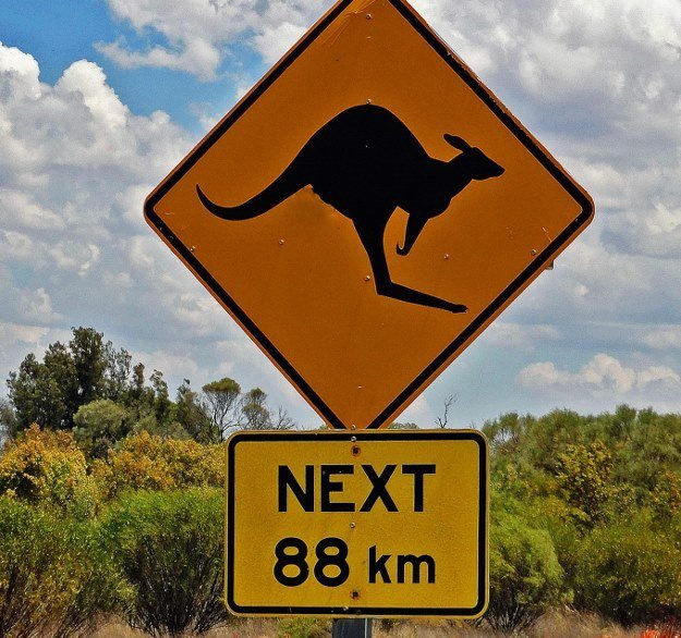 signs crossing animal road cross sign kangaroo around kangaroos outback changesinlongitude australia helping roads unusual turtles warn slow