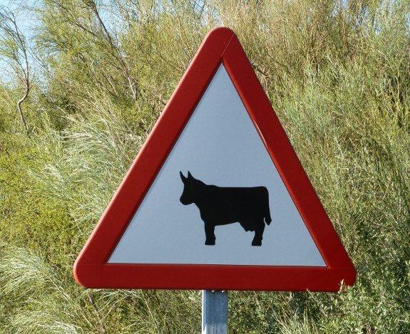 bull crossing sign in spain