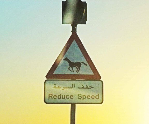 horse crossing sign dubai