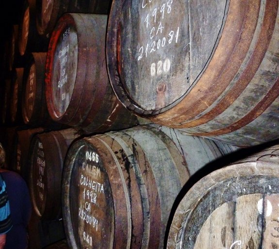 port wine casks in cellar