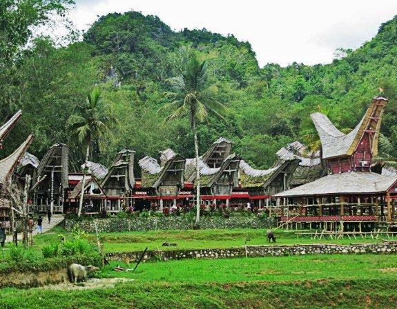tana toraja village