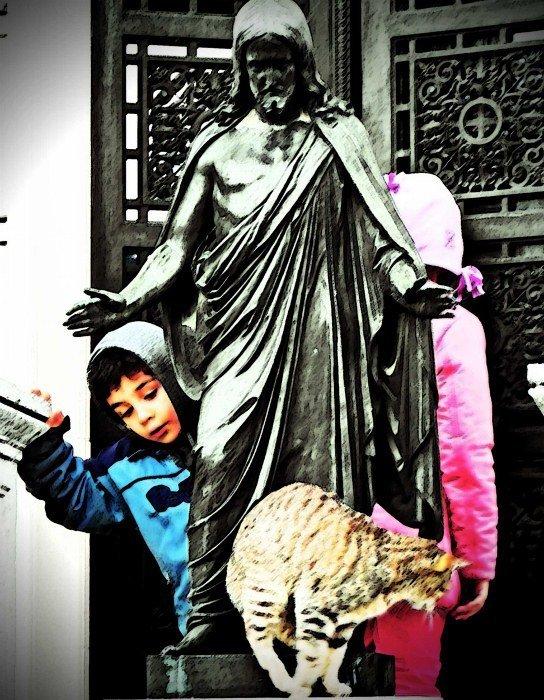 Buenos Aires recoleta cemetery cats