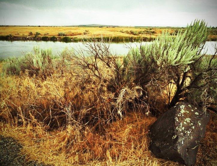 idaho landscape camp hunt