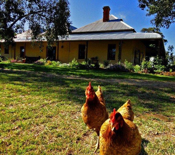 Unique places to stay Belars Australia