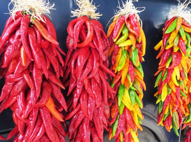 chile ristras, first thanksgiving in texas