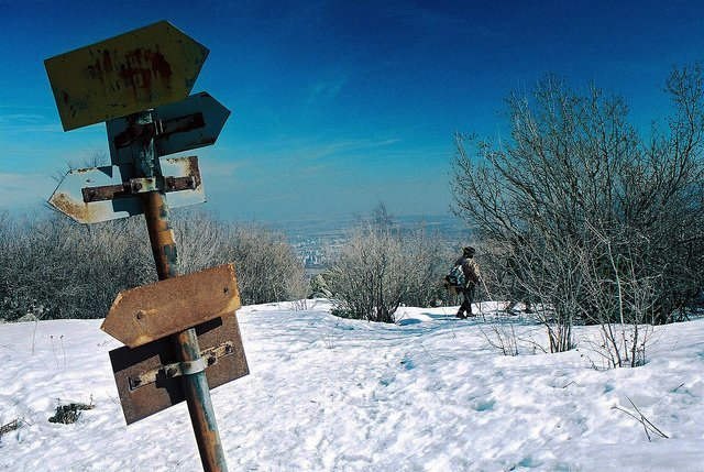 Vitosha Mountain hiking trail