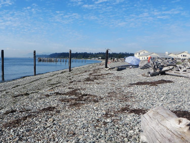 visiting point roberts beach (750x562)