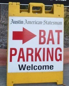 Austin Texas bat parking (402x500)