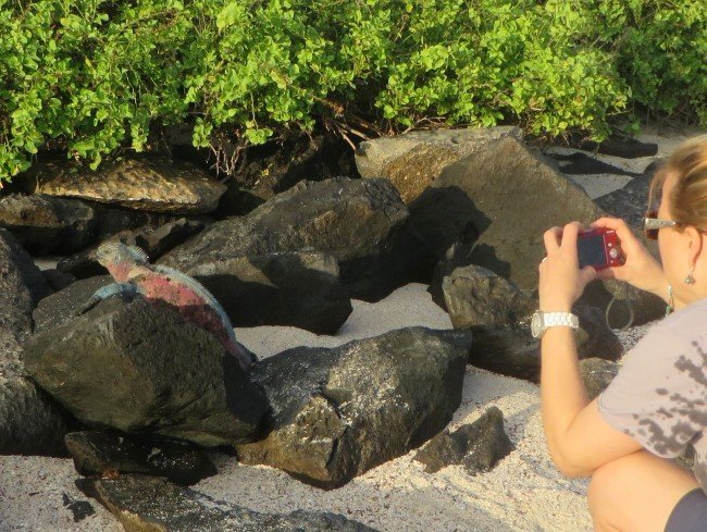 hiking to see iguanas-galapagos