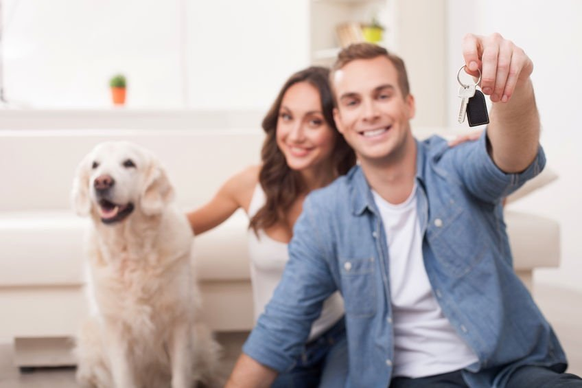 House sitters wanted, best house sitting websites