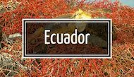 Link to Changes in Longitude blog stories about travel Ecuador