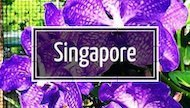 Link to Changes in Longitude blog stories about travel Singapore