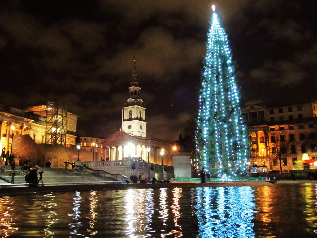 Christmas tree lit up at night, reflecting pool in front, St. Martins church in background